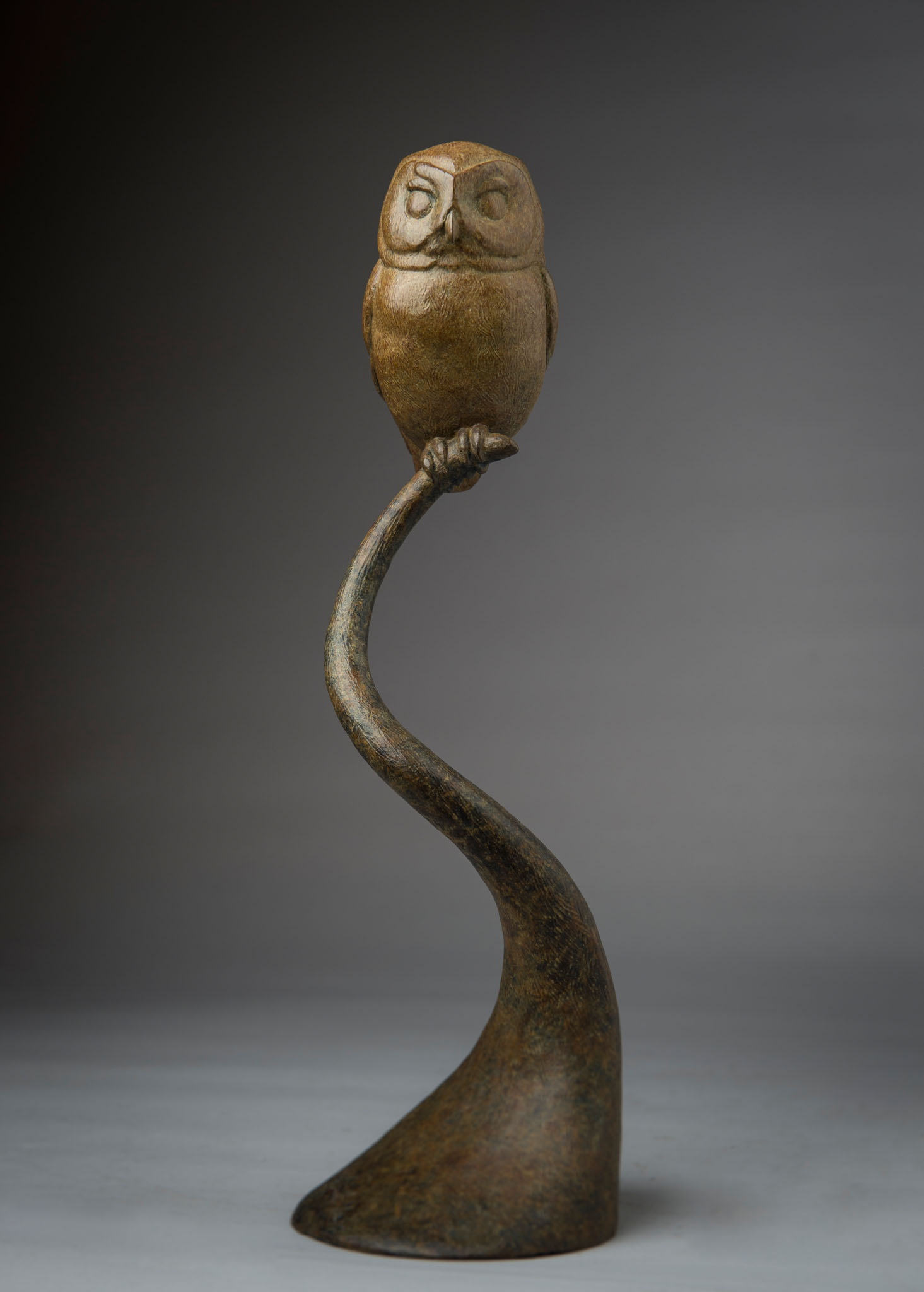 Bronze sculpture of a Saw Whet Owl by artist Anthony Smith