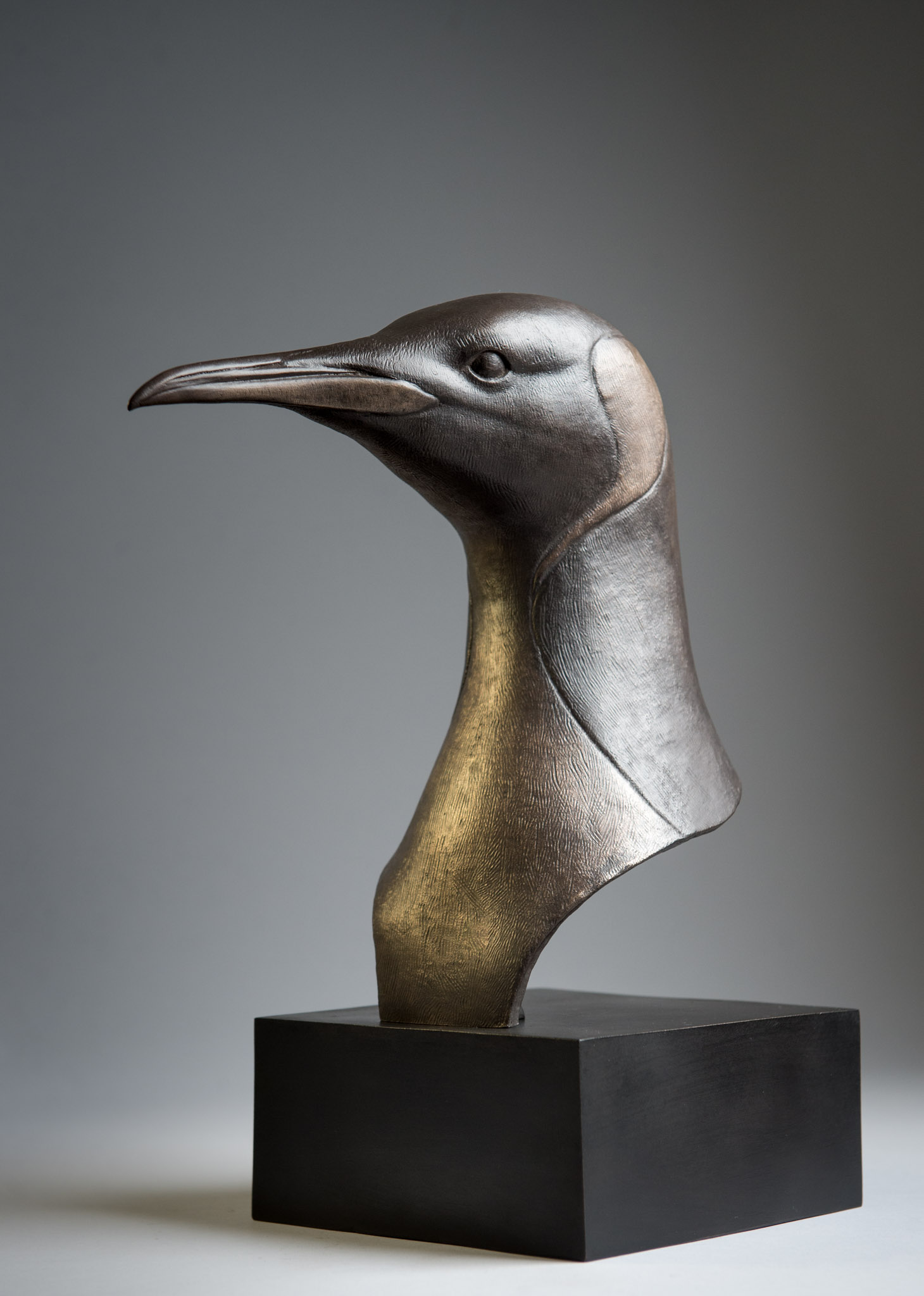 Bronze sculpture of a King Penguin head by artist Anthony Smith