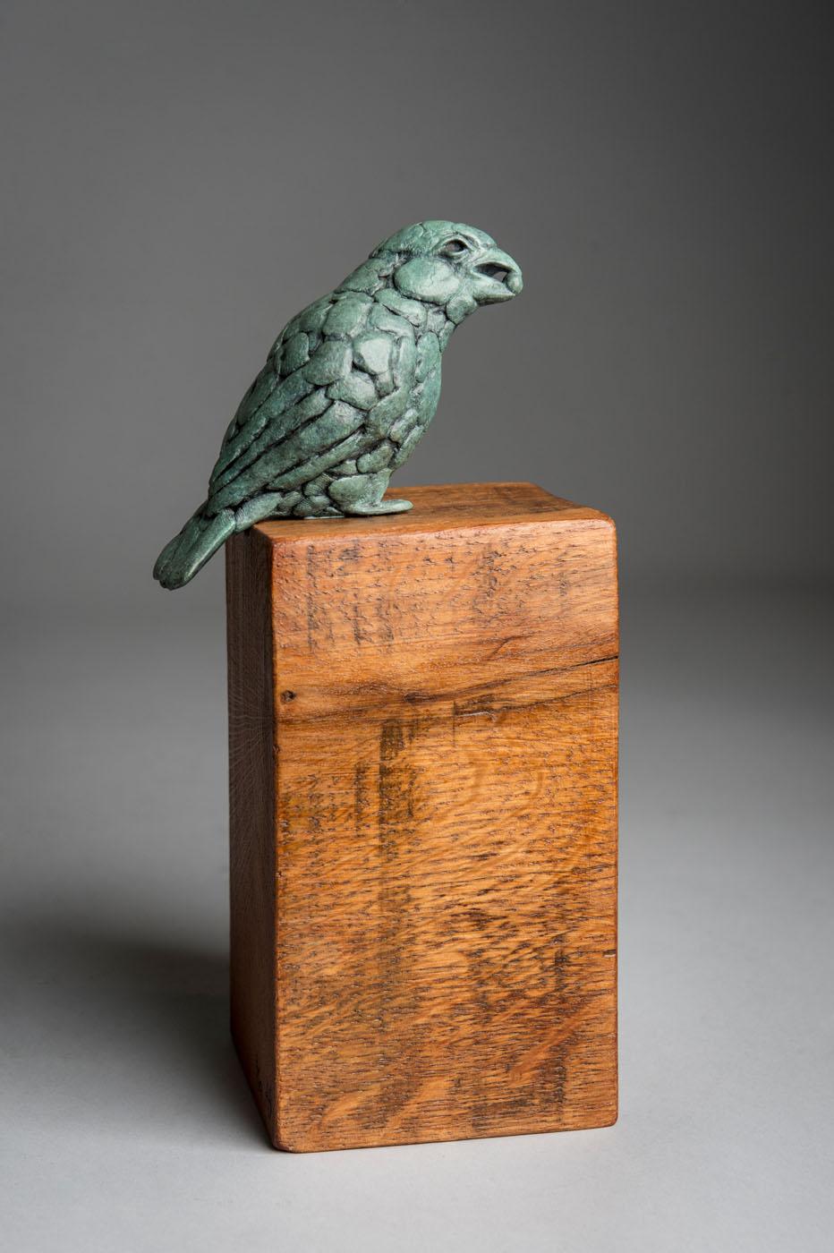 Bronze sculpture of a Darwin Finch bird by artist Anthony Smith