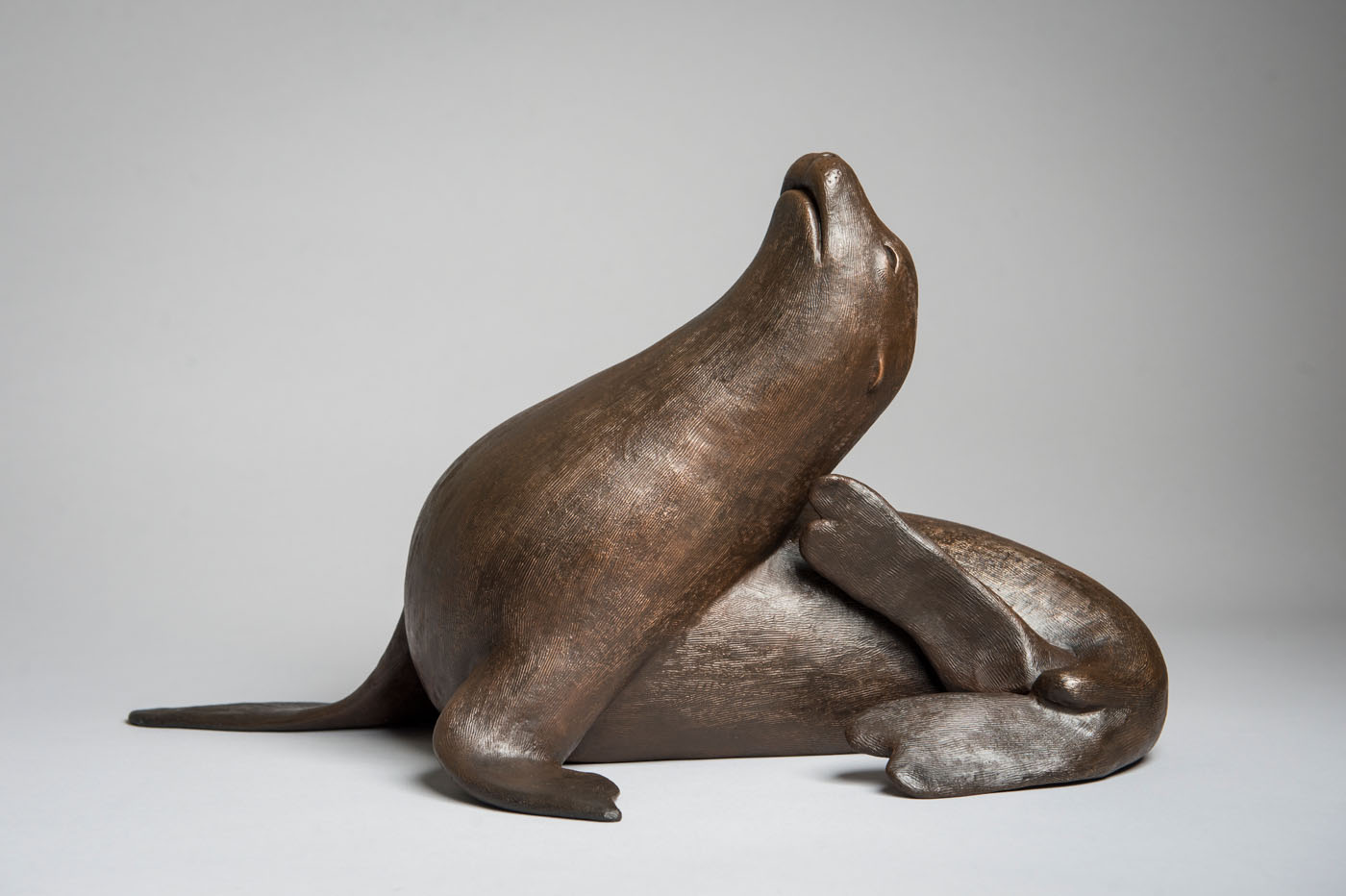 Bronze sculpture of a Sea Lion by artist Anthony Smith
