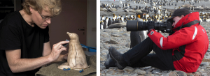 Artist Anthony Smith working on bronze Gentoo Chick sculpture and photographing King Penguins in South Georgia