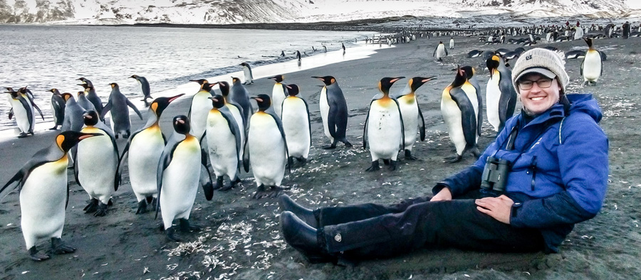 Artist Anthony Smith with King Penguins on a beach on South Georgia